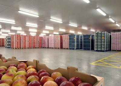 distribution-centers-3